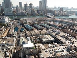 Tsukiji:Gambaran keseluruhan dan Sejarah