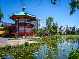 上野の概要・歴史