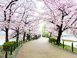 上野恩赐公园周边区域