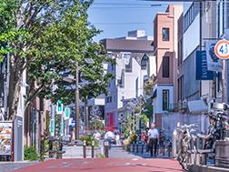 貓街 (Cat Street)