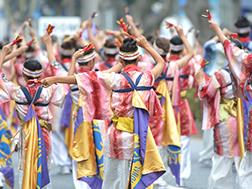 8月下旬 原宿表参道元氣祭スーパーよさこい