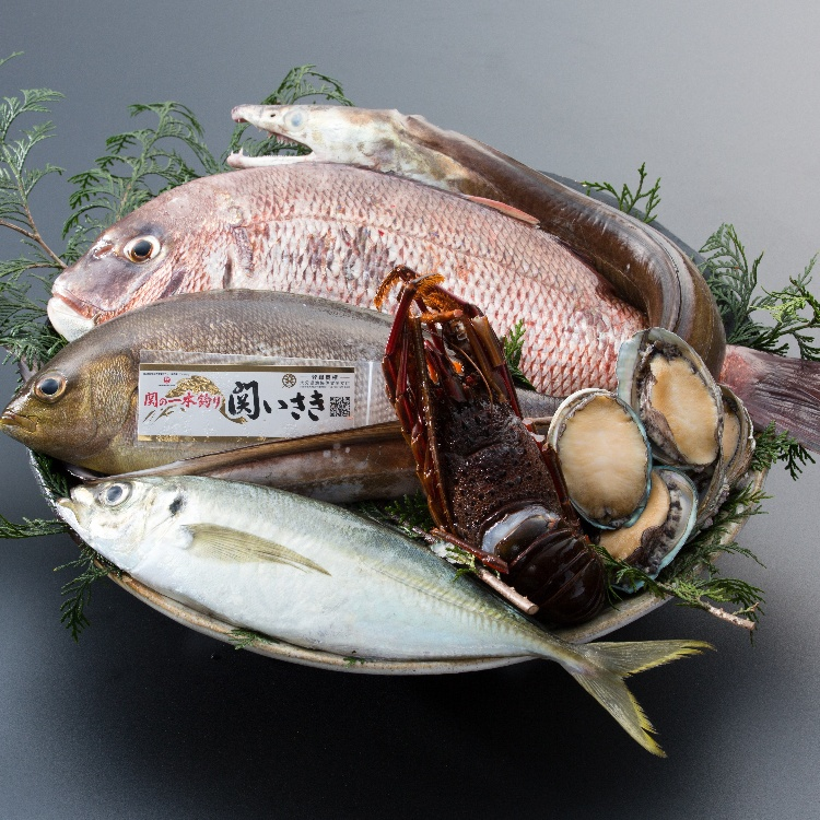 Fresh Other sashimi / fresh fish dishes arriving today at 8:00AM.