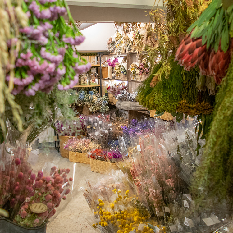 Sales for Limited quantities of Dried Flowers open 22 September 2018, 12:00PM.