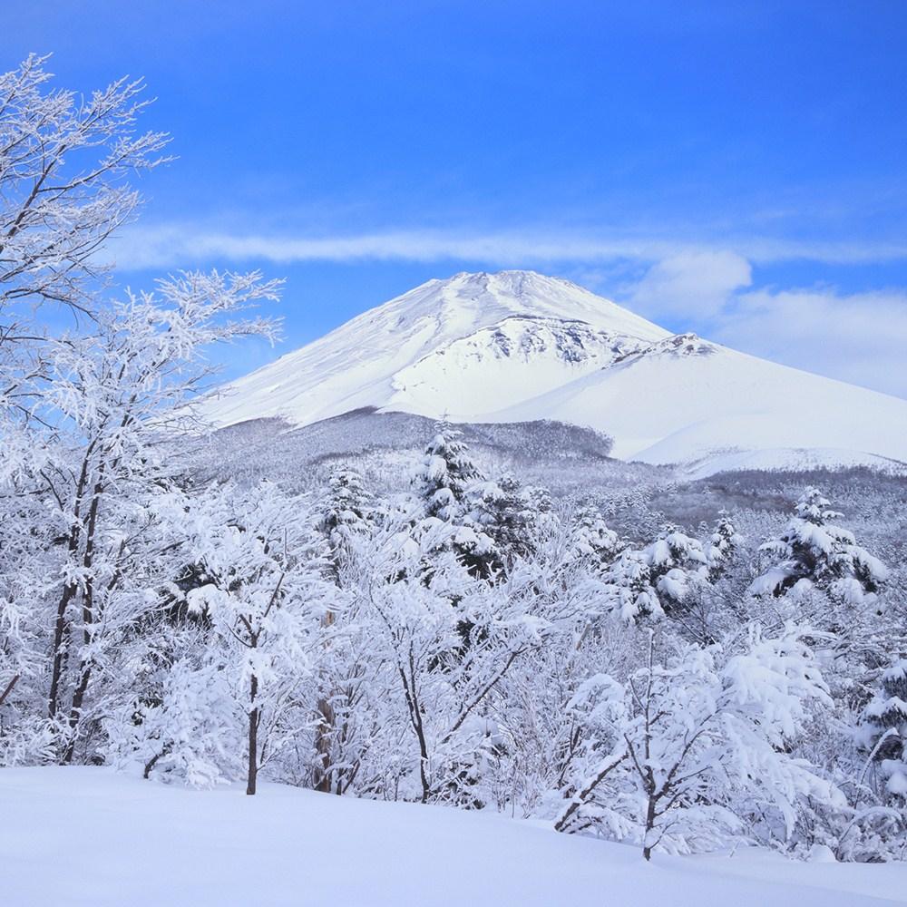 Tamasya Musim Dingin