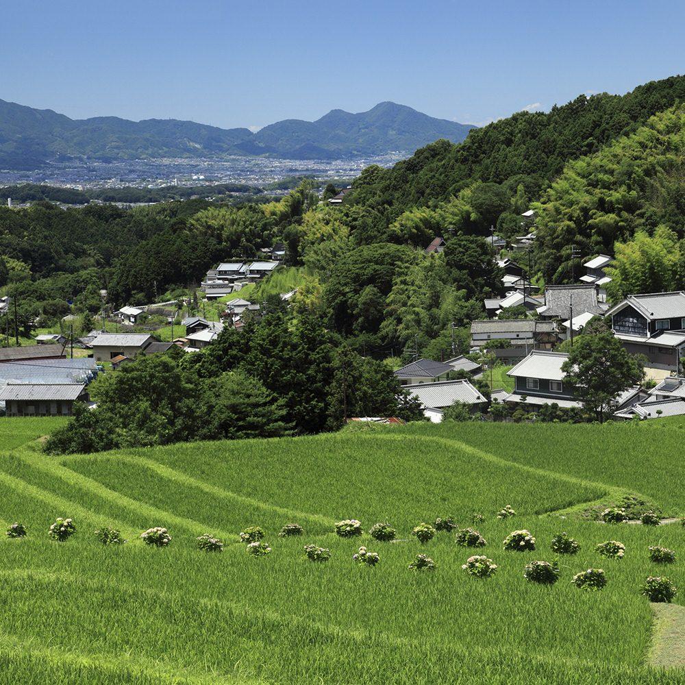 Farming Villages