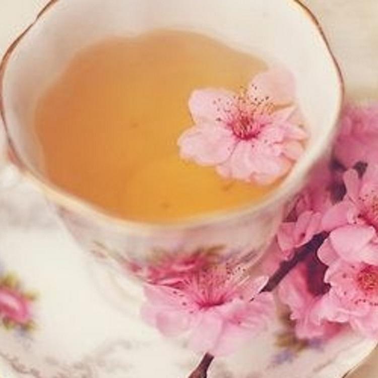 [For Sakura Petal holders]1 serving of Sakura Tea or Sakura SodaGifts