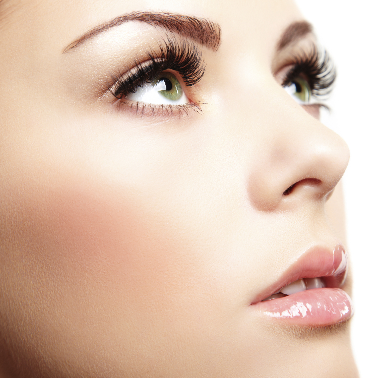 MEGA UP Eyelash Extensions \2,00050% OFF