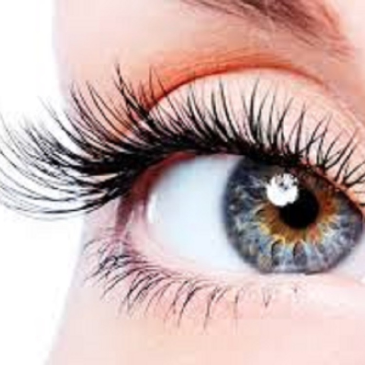 Unlimited Lower Eyelash Extensions \1,0003,980JPY (excluding tax)→1,000JPY (excluding tax)