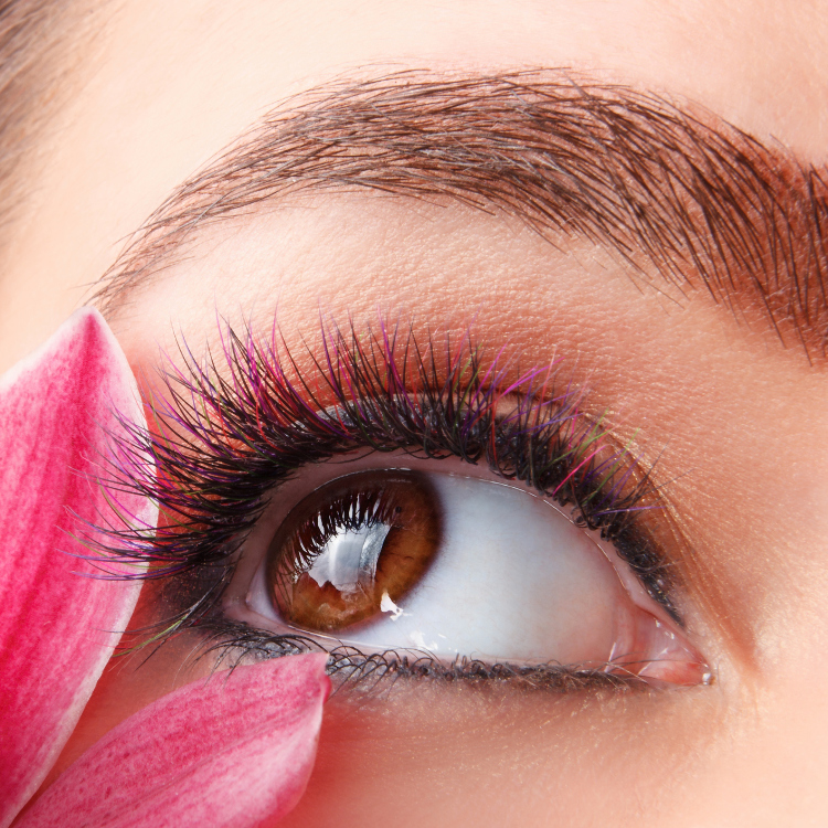 Color Eyelash Extensions 60 pieces + Unlimited Black Eyelash Extensions\8,98023,460日元(不含税)→8,980日元(不含税)