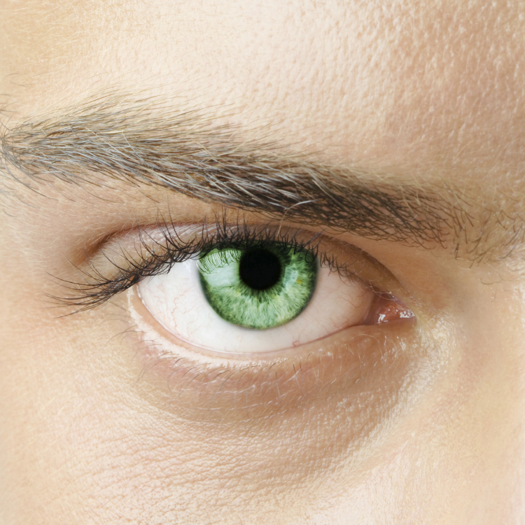 Eyelash Extensions 100pieces & Eyeblows cut for men! \698025,682JPY (excluding tax)→6,980JPY (excluding tax)