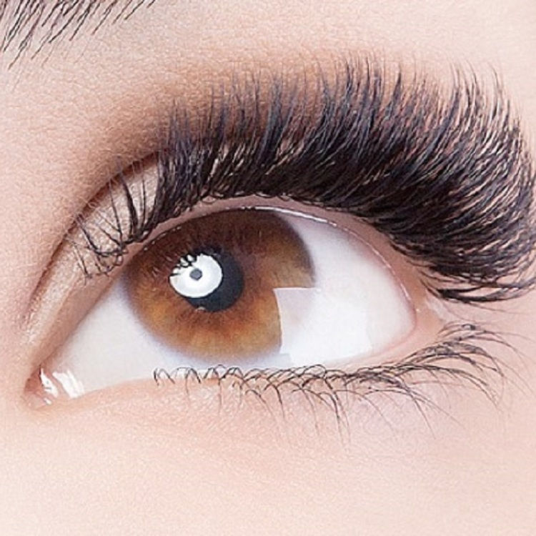New! 3D Cashmere Volume Eyelash Extensions 400pieces ★ \9,98014,980JPY (excluding tax)→9,980JPY (excluding tax)