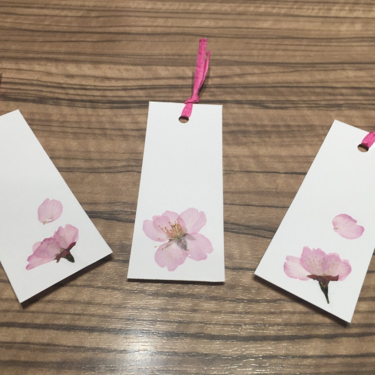 Cherry blossom bookmark for free