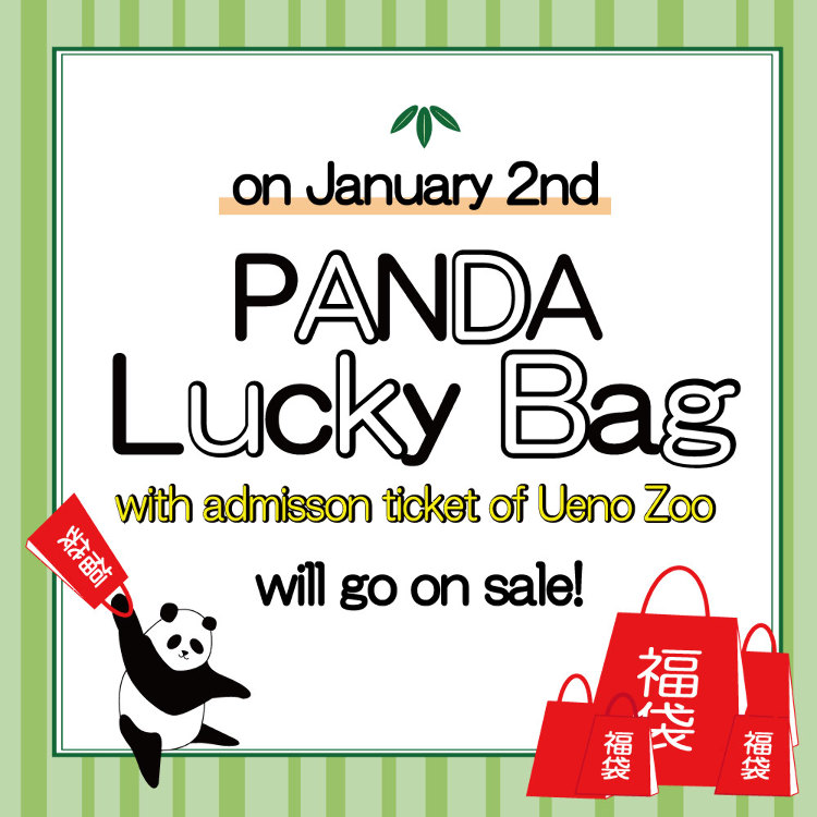 ! PANDA LUCKY BAG will go on sale !