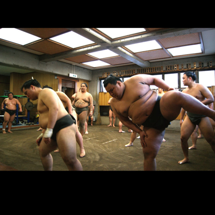 Watch Sumo practice at Sumo stable in Tokyo