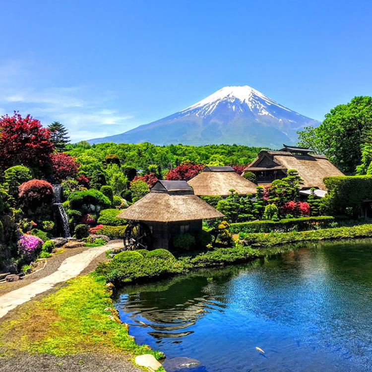 バスツアー 富士山1日コース