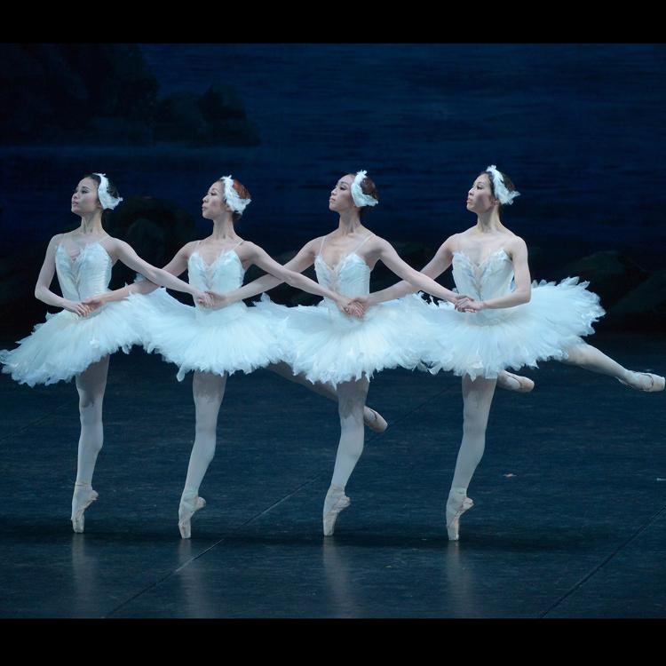 [ダンス・バレエ]日本を代表するバレエ団やダンスショーの公演をお楽しみください。