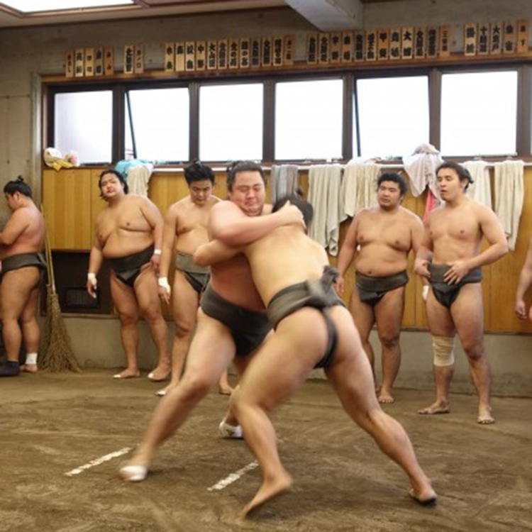 [Sports]We have sumo tickets too!