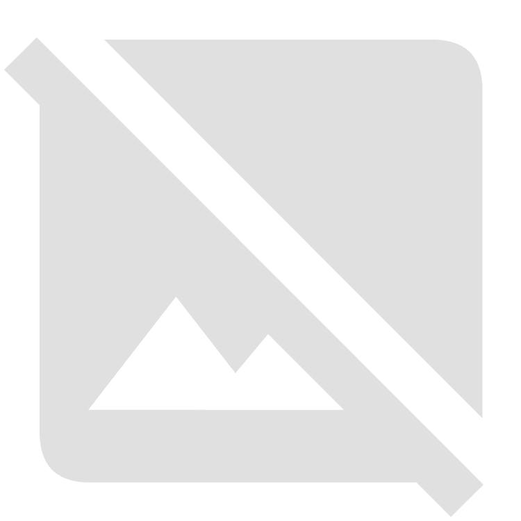 소검 / 히슈('데와노카미유키히로'(초대) / 특별 보존 도검 감정서 첨부