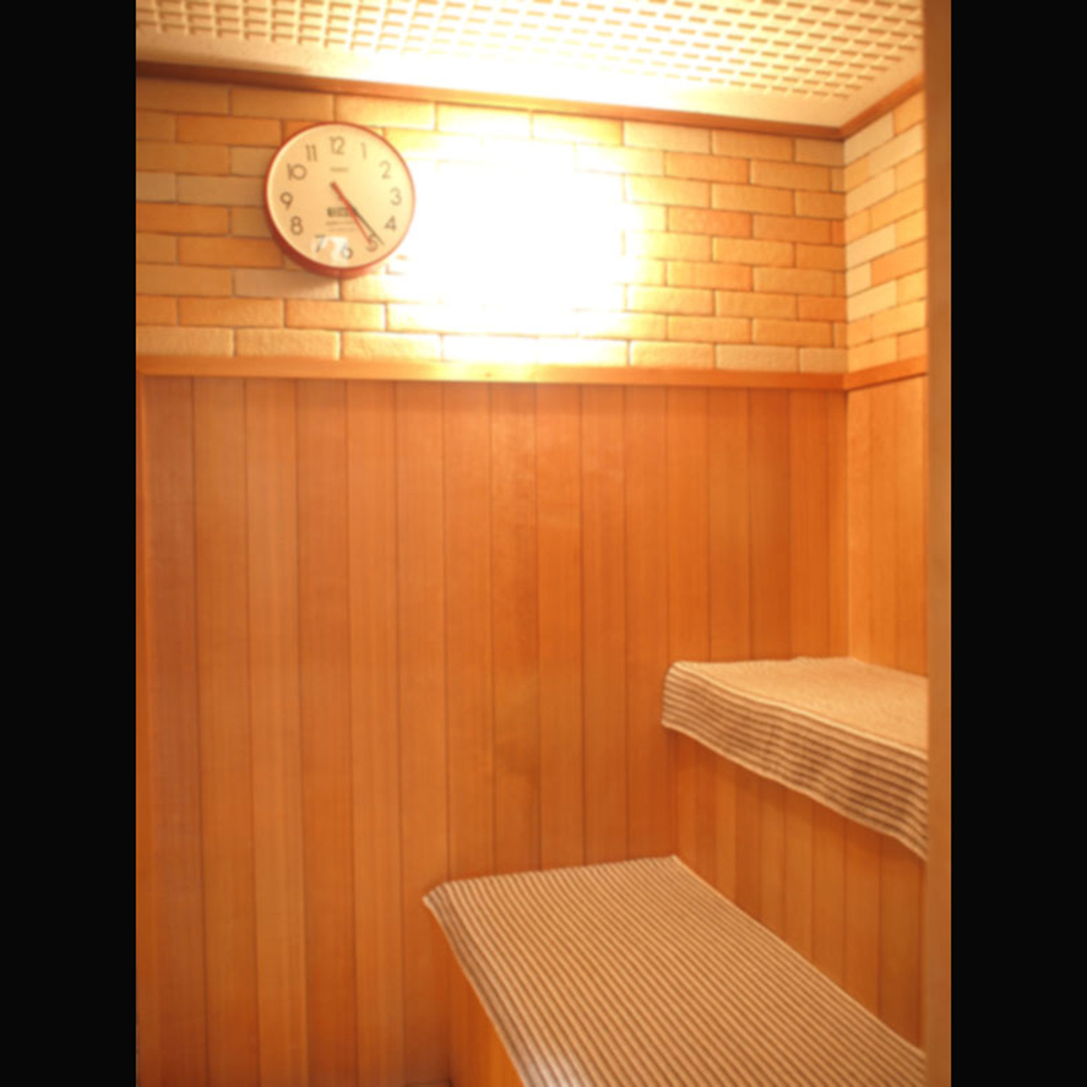 Sauna (Admission fee included )