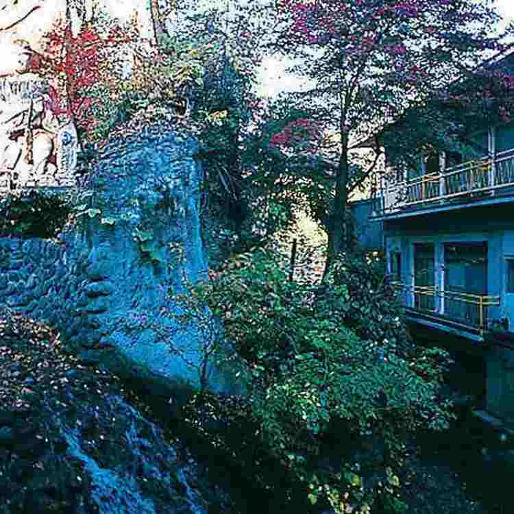 霊泉旅館 不動の湯