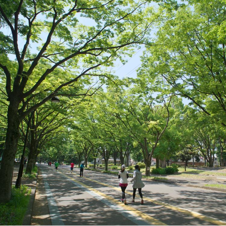 고마자와 올림픽 공원