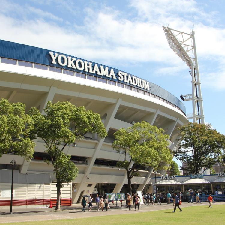 横滨体育馆