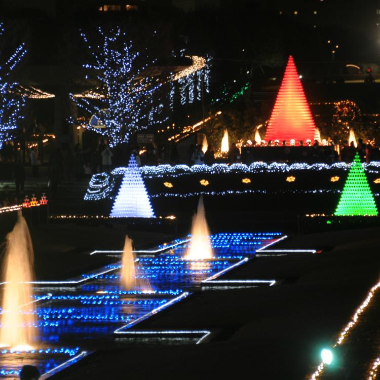 国营昭和纪念公园