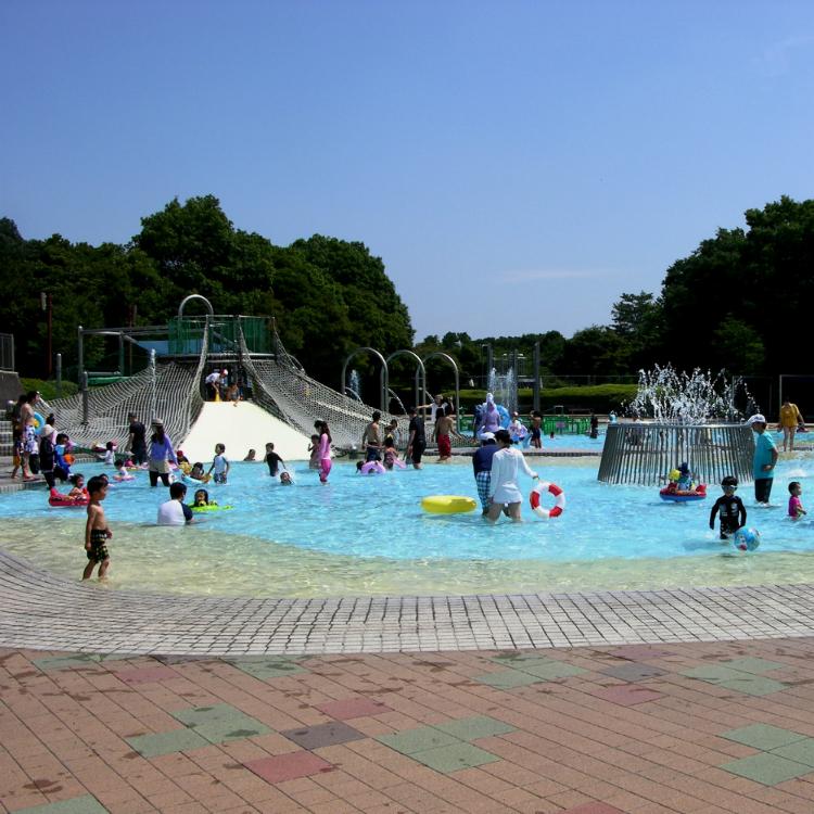Showa Memorial Park