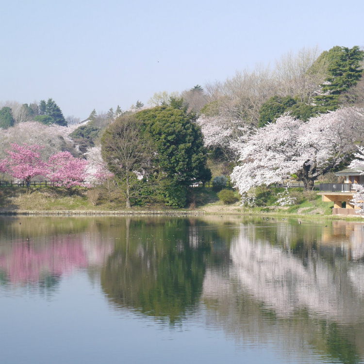 Mitsuike Park