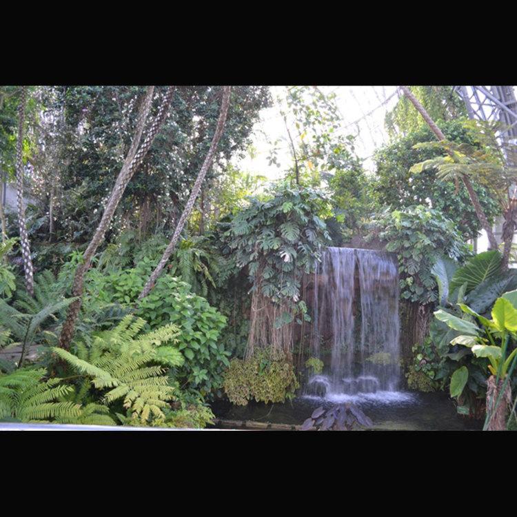 유메노시마 열대 식물관