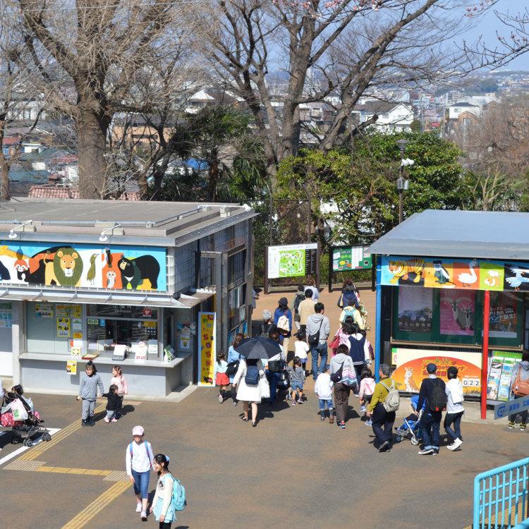 野毛山动物园