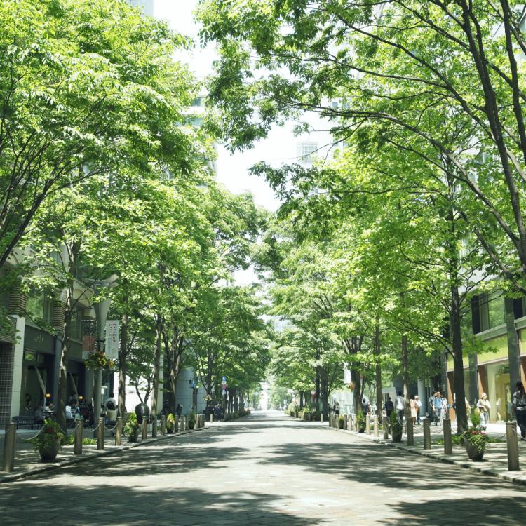Marunouchi Naka-Dori Street