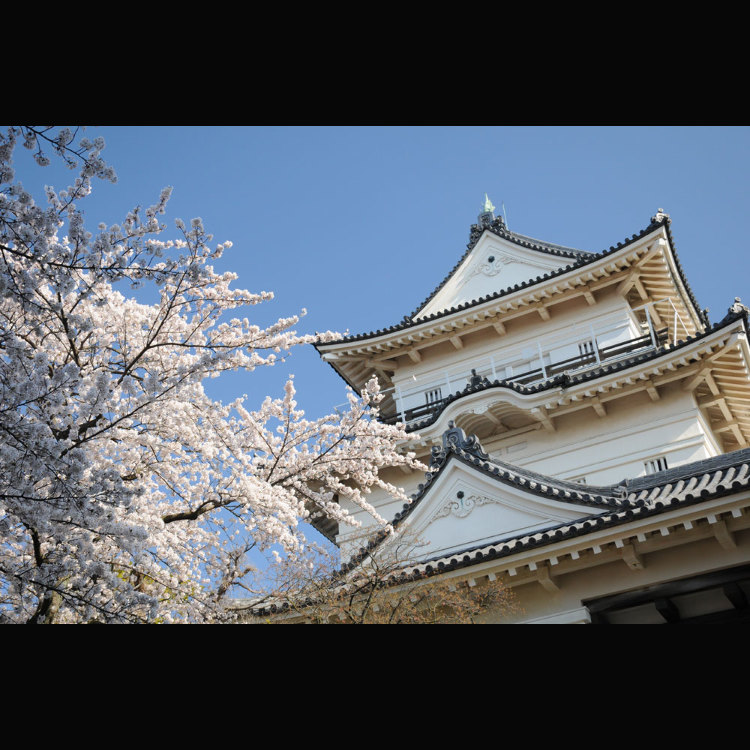 Odawara Castle