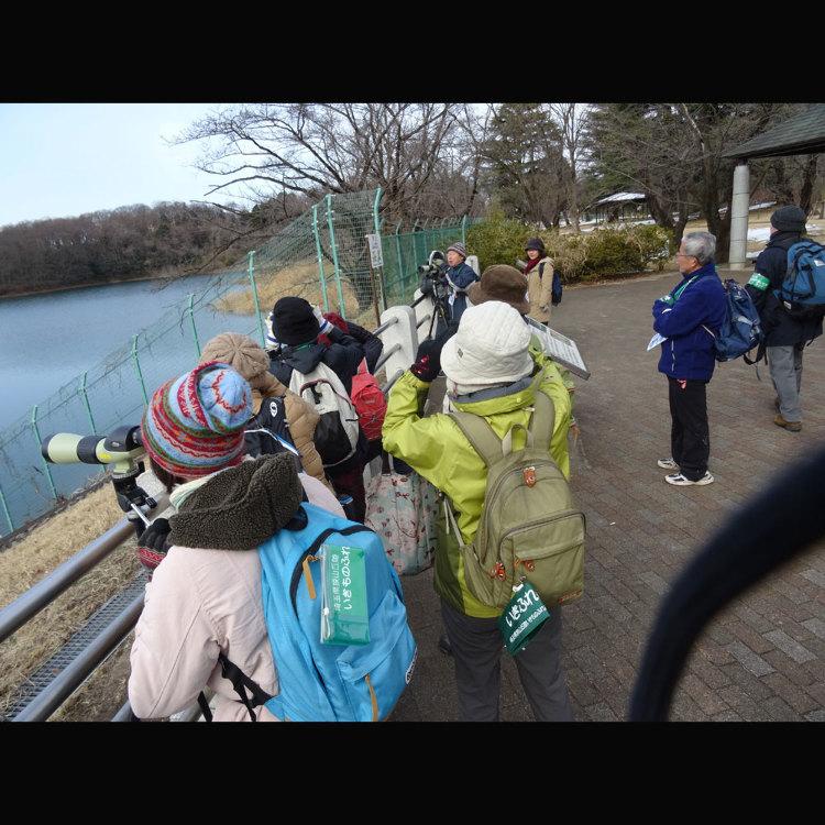 사이타마 현 사야마 구릉, 생명과 교감하는 마을 센터