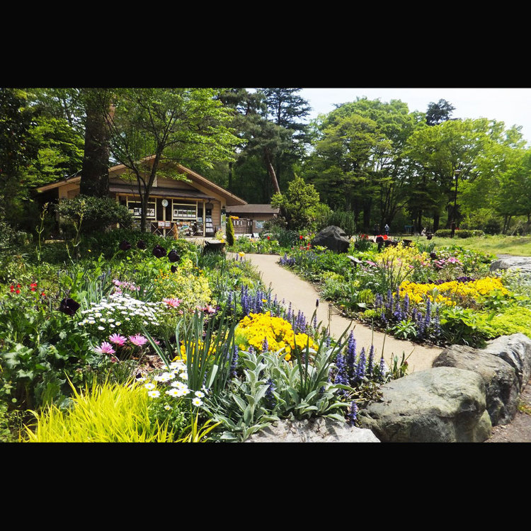 사야마 공원