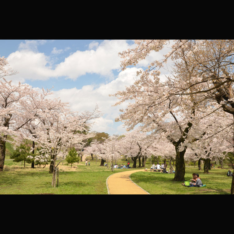 Sayama Prefectural Natural Park