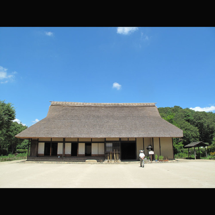 Noyama Kita Obstacle Course Park