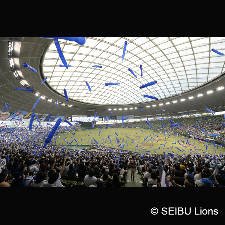 Seibu Prince Dome