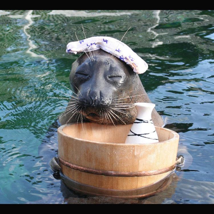 箱根园水族馆