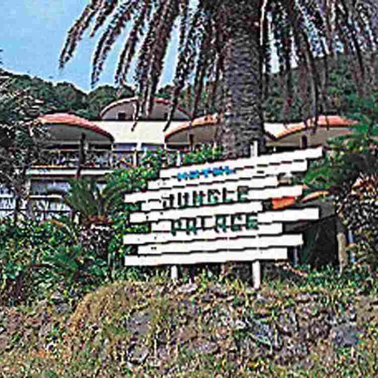 Hotel Jungle Palace