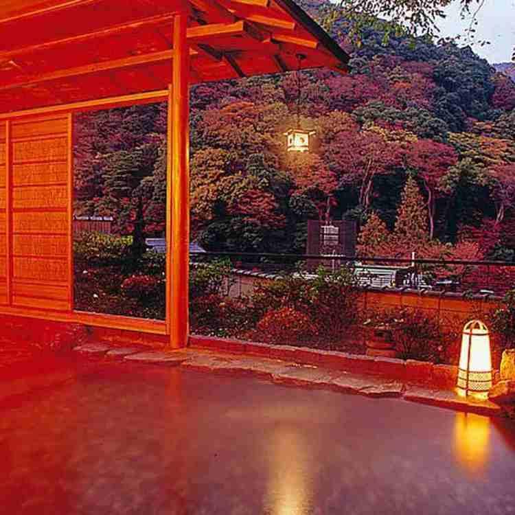 Hotel Senkei