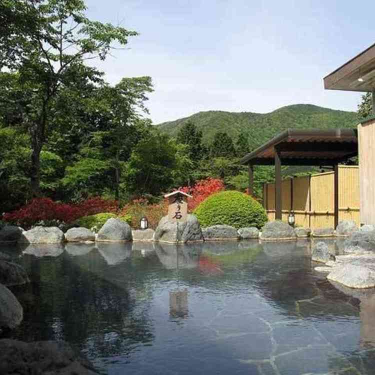 Hakonekogen Hotel