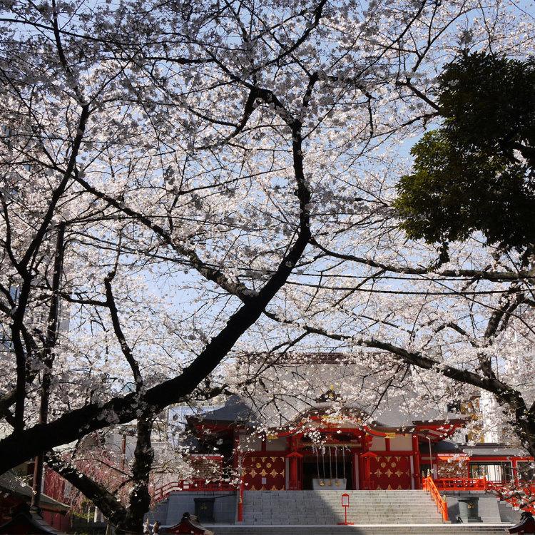 新宿花园神社