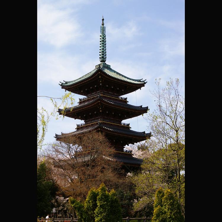 旧宽永寺五重塔