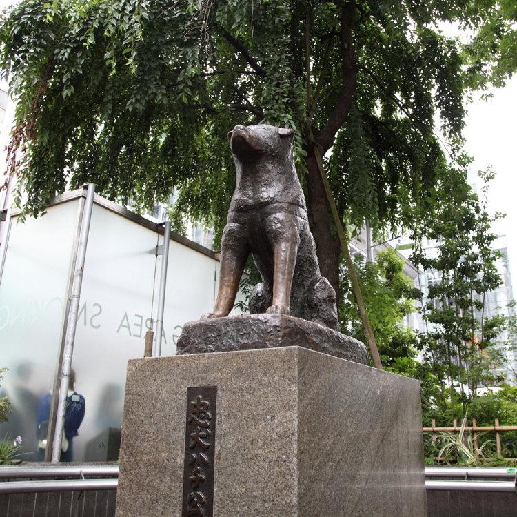 충견 하치 공의 동상