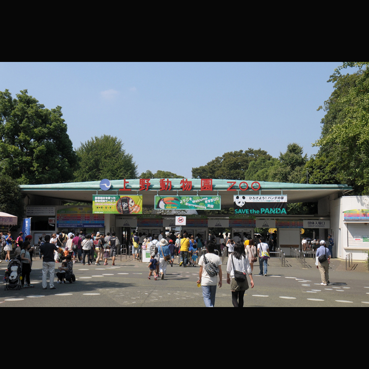 Ueno Zoo (Ueno Zoological Gardens)