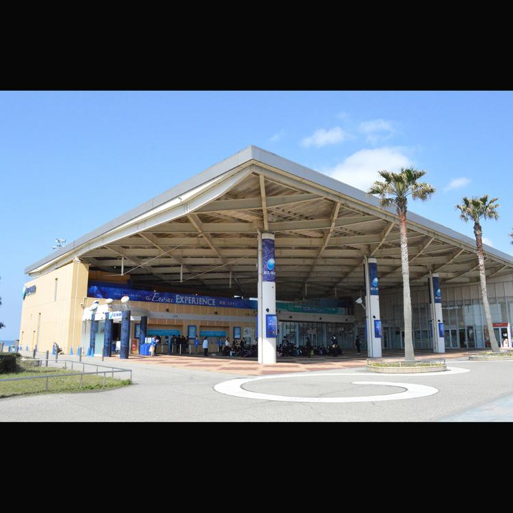新江之島水族館