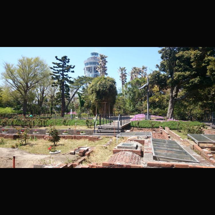 江之島塞繆爾·科金(Samuel Cocking)公苑