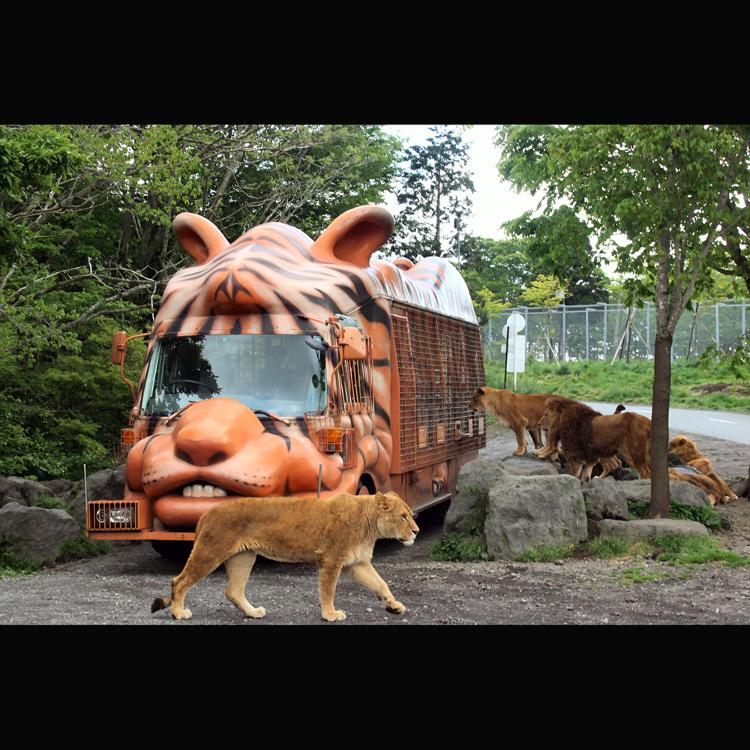 富士野生動物園