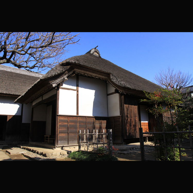 Sakura Samurai Houses
